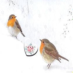 Watercolor Bird Wedding